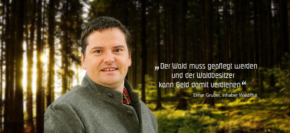 Gruber Elmar, Inhaber von WaldPlus